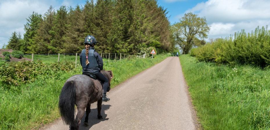 Pony's en ruiters in actie voor Pink Ribbon.