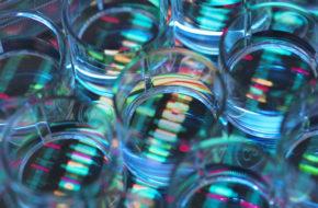 Omvangrijk tumor-genoomanalyse